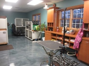 Professional Pet Grooming Indianapolis Salon