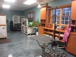 Professional Pet Grooming Indianapolis Salon
