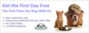Pet Boarding coupon- all year-2015