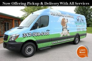Animal Den Indy Pick up and Drop off services
