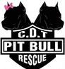 casa del toro logo- pet boarding Indianapolis sponsor
