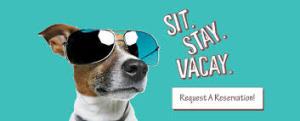pet resort -reservation request