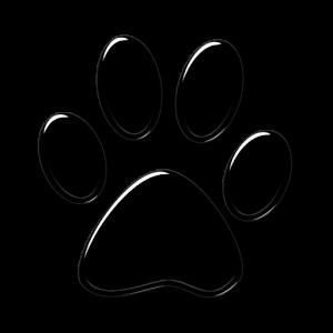 pet boarding Indianapolis - mobile app paw logo