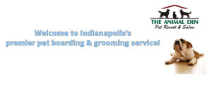 Welcome to luxury Indianapolis pet boarding and grooming