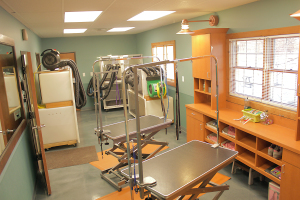 view of our pet grooming salon in Indianapolis