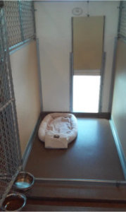 view 1 of 4 from the standard den at pet boarding Indianapolis
