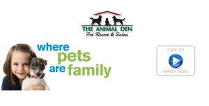pet resort video link